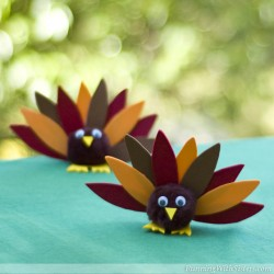 Pom Pom Turkey Friends