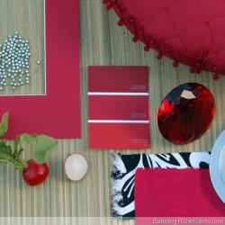Radish Red Mood Board