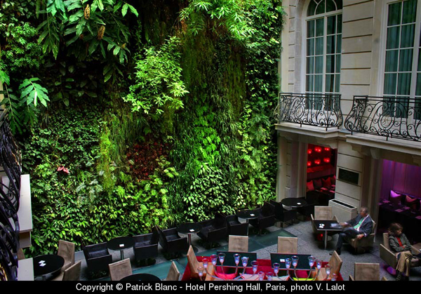 A Living Wall Amazes - Perching Hall Paris