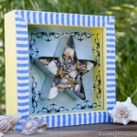 She Sells Seashells Shadowbox