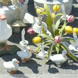 Gathering Spring Bulbs