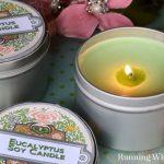 Eucalyptus Soy Candle Tin