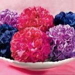 Flower Pomanders In Bowl