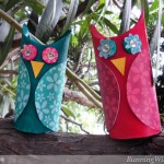 Kid Craft: TP Roll Owls!