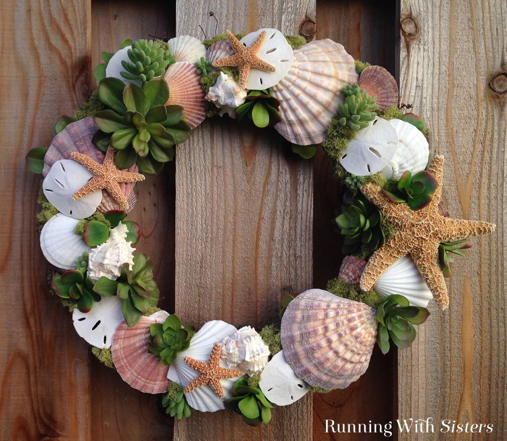 Seashells And Succulents Wreath Running With Sisters