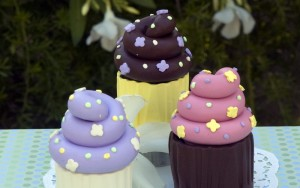 Sweet Cupcake Ring Boxes
