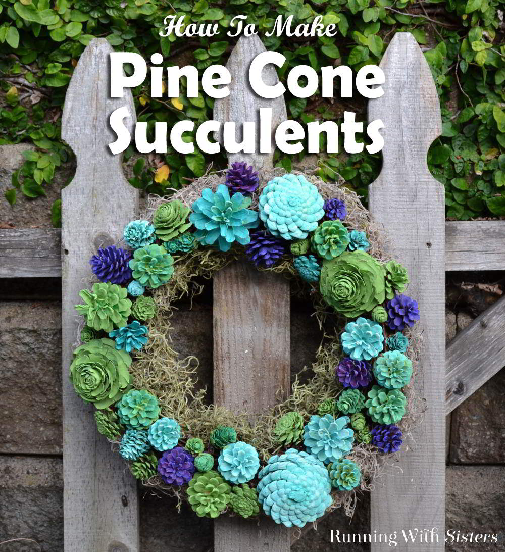 Paint pine cones to make pine cone succulents! We'll show you how to paint the pine cones and our favorite DIY succulent projects!
