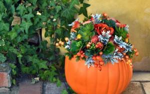 Faux Succulent Pumpkin