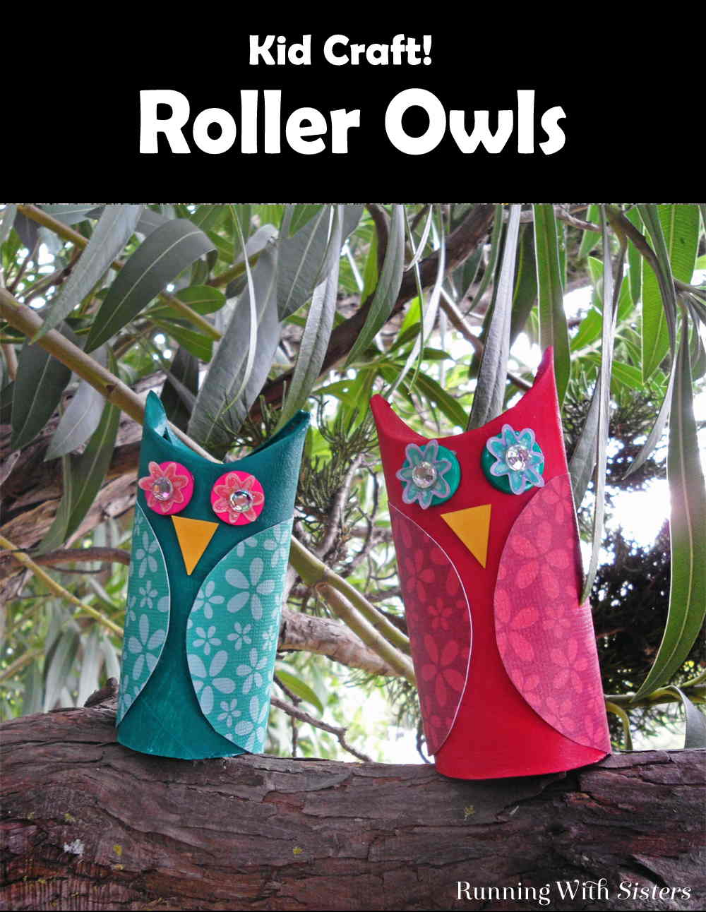 TP Roll Owls